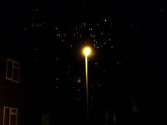starry night?