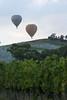Balloons & Vineyards (stevecart84) Tags: hotairballoons balloon yarravalleywineries yarravalley grapes nature scenic landscape outdoors nikon d7200
