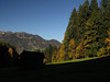On the way to the Schönberg (aniko e) Tags: forest mountains lenggries germany schönberg autumn fleck sunshine hiking