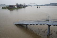 Nijmegen aan zee (Maurits van den Toorn) Tags: rivier river fluss nijmegen waal hoogwater highwater brug bridge brücke