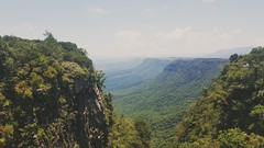 Life's a climb! - view from God's Window, South Africa (amyg903) Tags: green greenery trees south africa southafrica mountain mpumalanga cliff cliffs forest nature outdoors travel gods window godswindow lookout