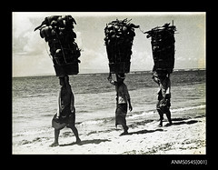 Photograph depicting three people carrying baskets on their heads. (Australian National Maritime Museum on The Commons) Tags: 1930s worldwarii germany australia travel newguinea market turtle sea hut beach canoe java papuanewguinea