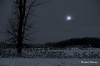Par un matin de pleine lune...  / Early morning under full moon... (Pentax_clic) Tags: imgp3456 pentax janvier 2018 robert warren vaudreuil quebec lune arbre hiver