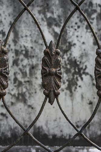 171002-9791-Fence