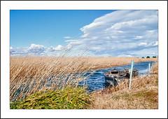 Naturaleza en estado puro. (De carrusel) Tags: 2015 agua paisajes carrusel lampolla catalunya españa es