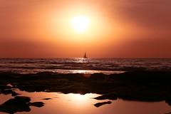 Sailing at sunset - Tel-Aviv beach - Follow me on Instagram:  @lior_leibler22 (Lior. L) Tags: sailingatsunsettelavivbeach sailing sunset telaviv beach telavivbeach israel