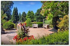 Sommer im Rhododendron-Park (Don111 Spangemacher) Tags: bunt blüte blumen sitzbank himmel kulturlandschaft bremen hornlehe rhododendronpark reisen naturpark norddeutschland natur pflanzen park sandwege hansestadtbremen