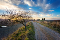 nature is our host (*magma*) Tags: valdorcia toscana tuscany italy country hills colline valley trees cipressi cypresses grass erba campi fields sunset tramonto vitaleta cappella chiesa church