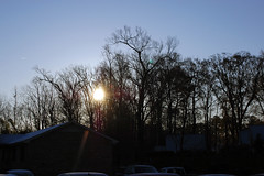 Sun Behind The Trees. (dccradio) Tags: lumberton nc northcarolina robesoncounty outside outdoors morning goodmorning snow dusting morningsnow sky morningsky sunrise morningsun sun tree trees treebranches branches treelimbs nature natural building apartmentbuilding
