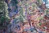 Bravery (twinblade_sakai340) Tags: adventure angel fun hike hiker hiking landing landscape mountain mountains national nature outdoor outdoors park slot utah wall zion