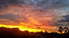 Sunset summer  #sunset #entardecer #serra #montain #majestic_earth #best_sun #best_nature #valedoivai #parana #brasil #city #citiesoftheworld #rosariodoivai #bermudesfotografia #fotografiatododia #paisagem #goldenhour #horadourada #skyfire #pordosol #rosá (bermudes) Tags: valedoivai montain belezadoparana majesticearth rosariodoivai pordosol sunsetlovers goldenhour city entardecer brasil serra bestnature paisagem bermudesfotografia citiesoftheworld fotografiatododia bestsun horadourada rosáriodoivaí sunset skyfire naturepower parana