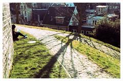 Burcht van Leiden (jmvanelk) Tags: nikonfe nikkor3570mm ektachrome expiredfilm xprocessed e6toc41 filmisnotdead colorshift leiden burchtvanleiden holland shadow tree green sunlight cold winter xpro
