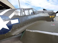 "North American P-51A-10-NA Mustang 4 • <a style=""font-size:0.8em;"" href=""http://www.flickr.com/photos/81723459@N04/39773829641/"" target=""_blank"">View on Flickr</a>"