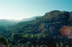 Ronda, Spain (Past Our Means) Tags: ronda spain mountain travel lens flare green sky tree trees sun sunrise wanderlust beautiful canon ae1 film kodak kodak200 kodakfilm 200 35mm 28mm analog analogue analouge gold indiefilm istillshootfilm filmisnotdead filmphotography filmsnotdead beauty