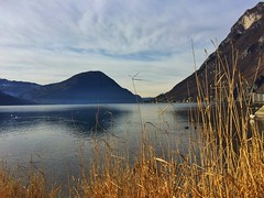 Lake Ceresio viewed from Porlezza, Italy (arunsebastian.panakal) Tags: ceresio porlezza italy italia lombardia lombardy como comasco mountain europe iphone iphone6 iphonephotography view300 faves10