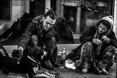 Le trio (vedebe) Tags: humain human people animaux chiens social société rue street ville city urbain urban noiretblanc netb nb bw monochrome