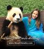 chengdu-photo-with-panda-0406a1 (westchinatravel) Tags: china panda picture holding photo chengdu dujiangyan base