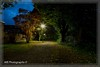 Path at blue hour (wibra53) Tags: 2016 blauweuurtje bluehour light nachtopname nature natuur night nightshot pad path verlichting