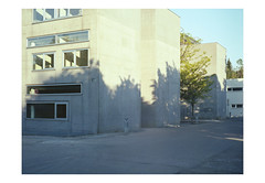 (harald wawrzyniak) Tags: analogue analog film scan kodakportra haraldwawrzyniak mamiya645af 120mm mediumformat filmphotography photography shadow light tree 2017
