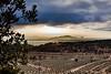 Champs d'oliviers-2 (jluclac) Tags: brume calandrier2019 castle chateau ciel couchédesoleil fog france french landscape oliviers paysages sky sunset