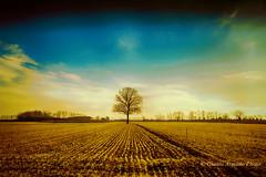 Ci sono paesaggi che esaudiscono il senso del dove e paesaggi che esaudiscono il senso del quando (Gianni Armano) Tags: ci sono paesaggi che esaudiscono il senso del dove e quando foto gianni armano photo flickr