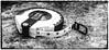 Day 41. (lizzieisdizzy) Tags: inside indoors indoor blackandwhite blackwhite black monochrome mono monotone monochromatic chromatic whiteandblack white whiteblack measure tape lengthfeet inches mm cm millimetres centimetres reelwinduptape plastic case winder length feet imperil metric frame framed