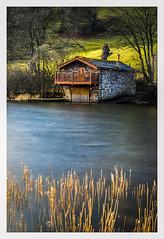 Duke of Portland Boathouse (Paul S Ewing) Tags: ullswater boathouse lake district england water reeds