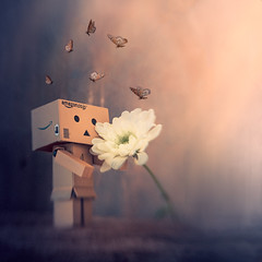 Danbo waiting for spring (Ro Cafe) Tags: dambo doubleglassoptic lensbaby stilllife whiteflowers blur fantasy funny cute selectivefocus nikond600