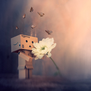 Danbo waiting for spring