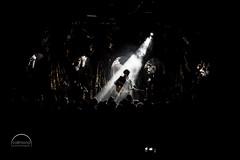 Faber - Sei ein Faber im Wind (vollmond | konzertfotografie) Tags: 2018 deutschland ditavollmond faber germany julianpollina konzertfotograf konzertfotografie konzertfotos seieinfaberimwind vollmondkonzertfotografie ace concertphotography ewerk editorial erlangen konzert live livemusic music musicphotography musik querformat tour