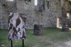 L'olivier de paliopotamo (miniquesk) Tags: patrimoine abbaye villerslaville photos photographer steel pierres ruines ancien fun