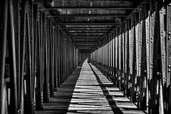 Once a Railroad (brev99) Tags: d610 tulsa tamron70300vc bridge shadows photoshopelements18 colorefex blackandwhite silverefex topazdetail topazdenoise