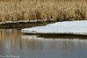 Reflections (vernonbone) Tags: 2018 eastpoint february ice marsh nikond3200 sigma150500 water winter
