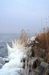 Gooimeerdijk 3.3.18 (1) (rspeur) Tags: almere thenetherlands winter