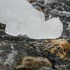 alangui sur un rocher (mimu_13) Tags: europe no nor norway troms tromsfylke tromso givre glace hiver saisons vinter winter samsungnx nx500 continentsetpays norvège tromsø météo météorologie