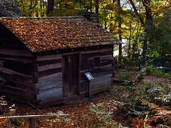 Fall at the Daniel Boone Native Gardens (BlueRidgeKitties) Tags: danielboonenativegardens canonpowershotsx40hs squireboonecabin northcarolina