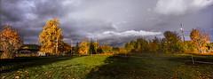 Stormy Contrast (Danielle Bednarczyk) Tags: storm light shadow contrast lighting clouds field trees fall wa washington pacificnorthwest pnw kodak ektar film hasselblad xpan