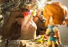 IMG_2685 (Karen May Martin) Tags: legend zelda link breath wild nendoroid good smile company toy photography hyrule goddess statue