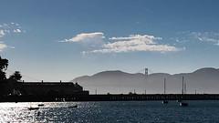 Golden in the mist (frantyky) Tags: eeuu usa goldengate costaoeste sanfrancisco viaje mist niebla trip bay california westcoast vacaciones bahía