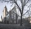 Binnenhof The Hague (Steven Dijkshoorn) Tags: kerk oud thehague denhaag binnenhof boom