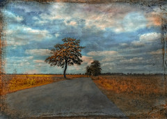 The way to...... ? (Bessula) Tags: bessula landscape nature trees skay moon way road field texture photomanipulation creative coth5