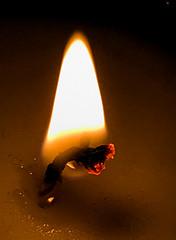 A flame (judy dean) Tags: judydean 2018 macromondays flame