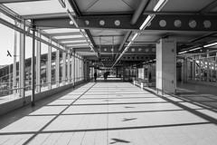 Flughafenbahnhof2018#2 (henningpietsch) Tags: 2018 düsseldorf flughafen lohhausen sigma20mmf14dghsm art015 sigma bahnhof architekture architecture weitwinkel wideangle sigmaobjektiv sigmalens bw sw schwarzweis blackandwhite