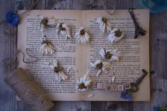 Love (Mireia B. L.) Tags: love heart driedflowers book stilllife fromabove flowers corazón 7dwf