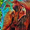Elephant Abstract Psychedelic by Kaye Menner (Kaye Menner) Tags: elephantabstractpsychedelic elephant elephantabstract psychedelic colorful colorfulelephant paintedelephant portrait elephantportrait asianelephant elephantidae familyelephantidae elephas genuselephas animal largeanimal mammal digitalpainting fractal kayemennerphotography kayemenner trunk elephanttrunk eye smalleye ear largeear floppy floppyear skin elephantskin dermis texture wrinkled kayemenneranimal vivid animalart elephantart