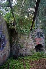 Tarban Creek Asylum 9 (PhillMono) Tags: australia new south wales sydney dslr nikon d7100 ruin relic abandoned overgrown tarban creek asylum urbex urban exploration old