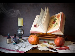 OTRO BODEGÓN CON GRANADAS (Miguel Calleja) Tags: stilllife stilleben bodegón naturemorte naturamorta naturalezamuerta granada grenade pomegranate candle vela book libro livres
