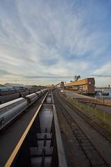 Trains (Stueyman) Tags: sony alpha ilce a7 a7ii newcastle nsw australia au trains sidings