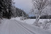 Forest road, Siberia, Russia (Fedor Odegov) Tags: winter snow forest road siberia russia kazyr