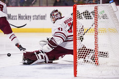 UMass hockey v Northeastern 011918-23 (dailycollegian) Tags: umass amherst hockey university massachusetts mullins center northeastern team celebration win caroline oconnor